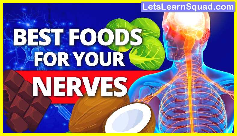 Top-10-foods-for-brain-and-nervous-system
